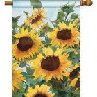 Custom Decorative Banners